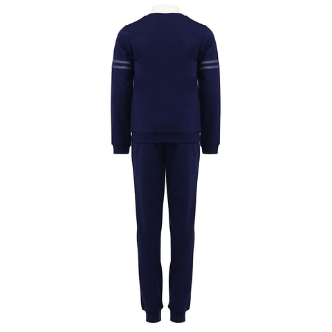 Костюм для девочки (джемпер, брюки) CAJ 9860